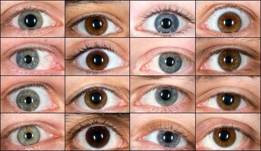 JEZT - Verschiedene Augen - Symbolbild - Foto © MediaPool Jena