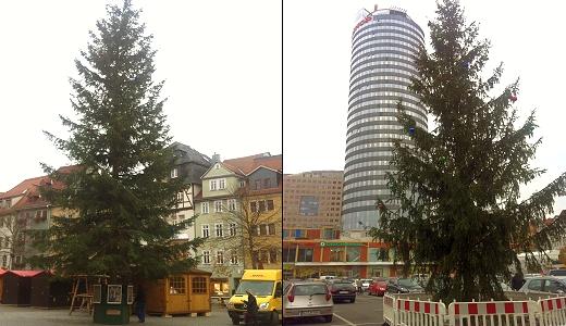 JEZT- Die Jenaer Weihnachtsbaeume 2014 - Foto © Phyletisches Museum Jena