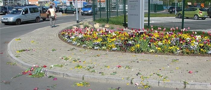 JEZT - Zerstoerte Blumenrabatten vor dem KSJ Hauptgebaeude in der Loebstedter Strasse - Foto © LPI Jena