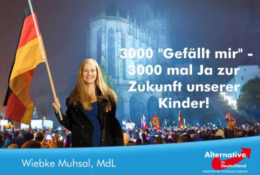 JEZT - Wiebke Muhsals Fotomontage mit dem Erfurter Dom und Demonstranten - Abbildung © Alternative fuer Deutschland