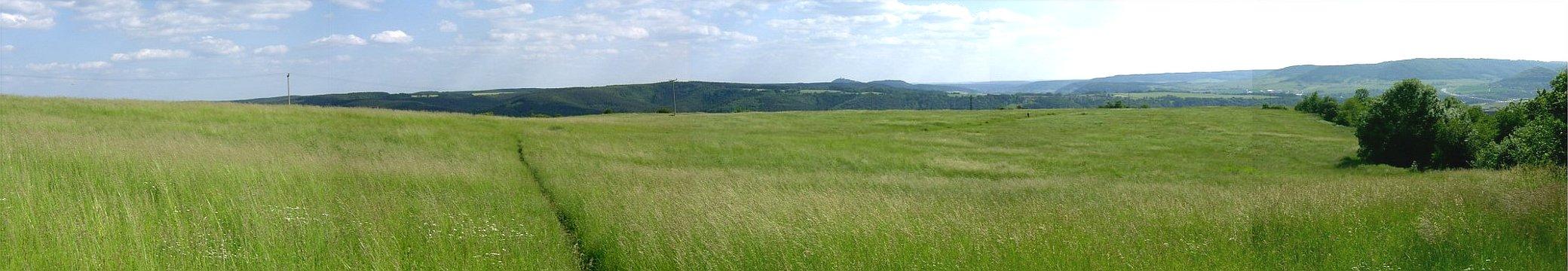 JEZT - Wiese bei Drackendorf im Jahre 2004 - XXLFoto © MediaPool Jena