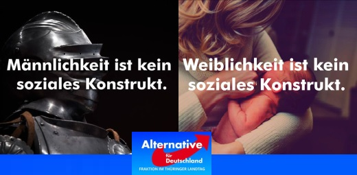 Männlichkeit Weiblichkeit AFD-Fraktion im Thüringer Landtag