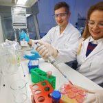 Dr. Jana Gerstmeier und Markus Werner arbeiten am Lehrstuhl für Pharmazeutische und Medizinische Chemie. Die Forscher konnten zeigen, dass Krankheitserreger in menschlichen Immunzellen ganz gegensätzliche Wirkungen hervorrufen können. - Foto © FSU Jan-Peter Kasper