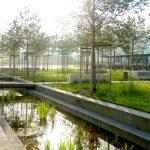 Vor allem Gewässer und Bäume spielen eine wichtige Rolle bei der Gestaltung der Außenanlagen am Jenaer Uniklinikum. - Foto © UKJ Schroll