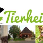 Heute ist von 11.00 bis 16.00 Uhr Sommerfest im Tierheim Jena
