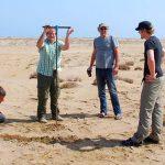 Jetzt u.a. durch FSU-Forscher bewiesen: Vor 1.000 Jahren traf ein gewaltiger Tsunami den Oman